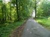 Bild 4 Waldweg im RuheForst